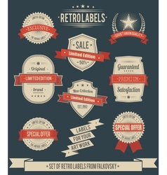 Set of vintage retro labels calligraphic elements vector image