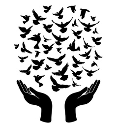 Hands releasing peace pigeon vector
