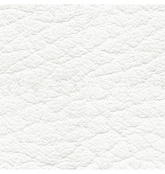 White leather seamless texture vector image