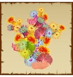 Colourful bush corals and polyps single object vector