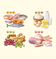 groups of fresh products which contains different vector image vector image