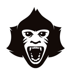 head of monkey vector image