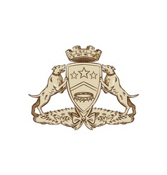 Pitbull Dog Coat of Arms Etching vector image