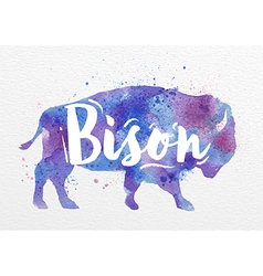Painted animals bison vector