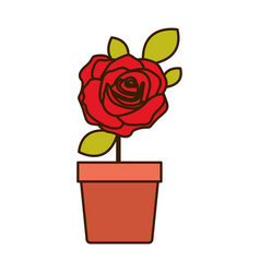 Colorful flowered red rose with leaves and stem in vector