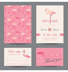 Invitation-congratulation card set - flamingo vector