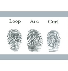 Set of fingerprints icons id security identity vector