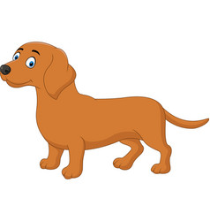 cartoon happy dachshund dog vector image