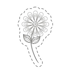 Daisy flower decoration cut line vector