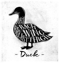 Duck cutting scheme vector