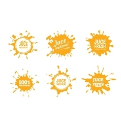 set of Yellow juice or honey vector image vector image