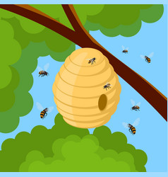 honey bees and hive on tree branch vector image