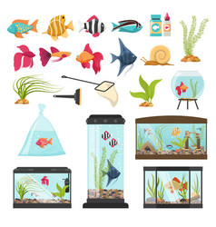 Aquarium essential elements collection vector