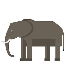 Isolated abstract elephant vector