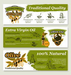 olive oil and fruit healthy food banner template vector image