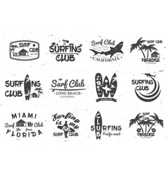 surf club and surf school design vector image