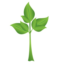 Small green plant vector