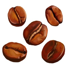 Coffee beans painted vector