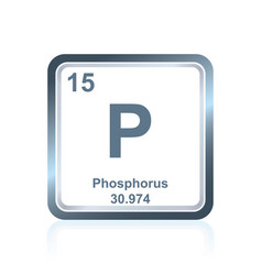 Chemical element phosphorus from periodic table vector