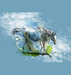 colored hand sketch of a white horse vector image vector image