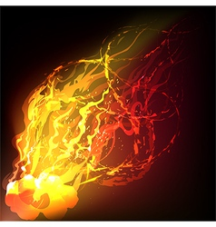 Fire on a wind vector image vector image