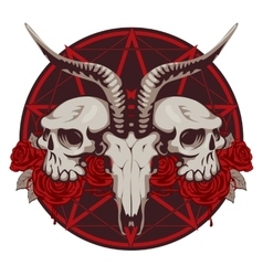 Goat and human skull and roses vector