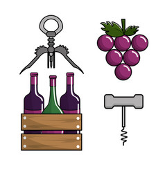 Bottles of wine grape and take out cork vector