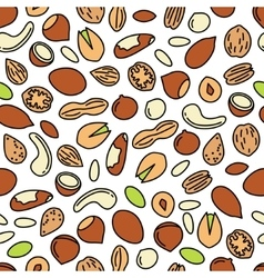 seamless pattern with nuts vector image
