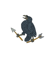 Crow Clutching Broken Arrow Drawing vector image vector image