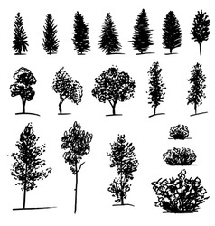 Set of hand drawn sketch trees on white background vector
