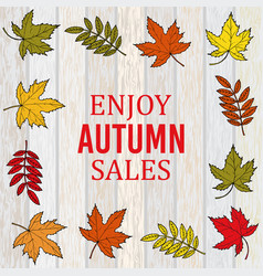 Autumn sale poster on wood background vector