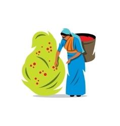 Coffee picker cartoon vector