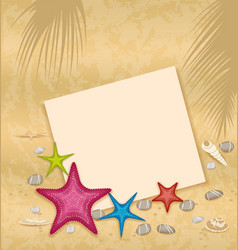Sand background with paper card starfishes pebble vector