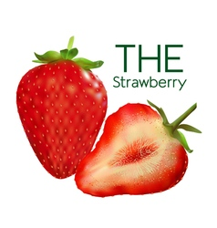 Figure ripe strawberries vector