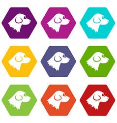 beagle dog icon set color hexahedron vector image