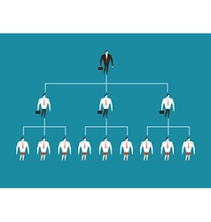 Hierarchy in company managing people management vector