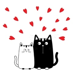 Cute cartoon black white cat boy and girl kitty vector