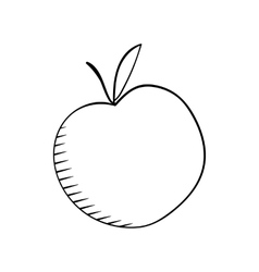 Apple sketh vector