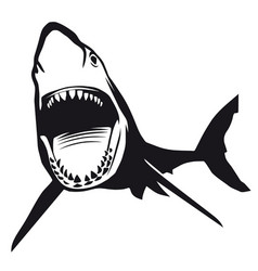 great shark with opened mouth vector image