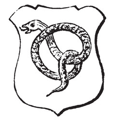 Serpent nowed proper is applied to serpents vector