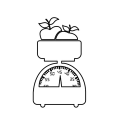 Weight with fruit icon image vector