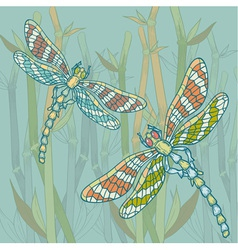 Dragonfly blue vector