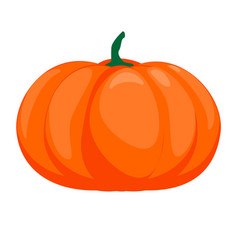 halloween isolated pumpkin in autumn dall vector image vector image