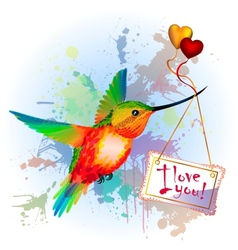 Rainbow humming-bird with Valentines Card vector image vector image