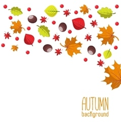 Bright autumn background for invitation or ad vector