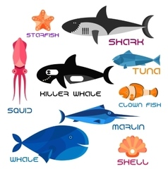 Cartoon marine animals in flat style vector image vector image