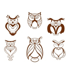 Set of cartoon owl birds vector image vector image