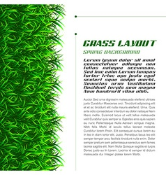 Grass layout vector