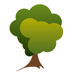 Colorful silhouette green tree nature icon vector