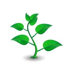green petal vector image vector image